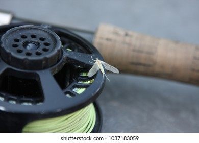 Mayfly on a fly fishing reel