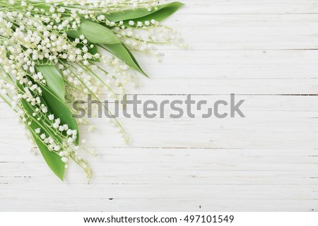 may-lily on wooden background