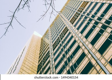 Mayo Clinic Images, Stock Photos & Vectors | Shutterstock