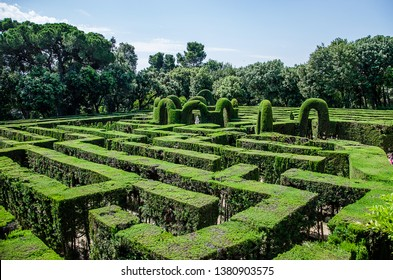 maze of cut bushes in Barcelona. Labyrinth Park of Horta