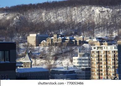 McGill University, Montreal in Winter