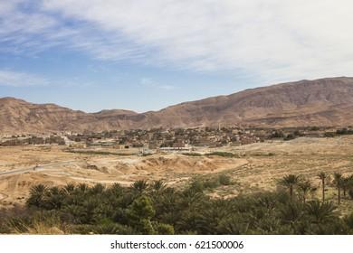 M'Chouneche oasis near Biskra city, Algeria