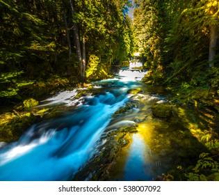 McKensie River down from Sahalie Falls Oregon Willamette National Forest
