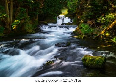 McKenzie River Cascades, Oregon