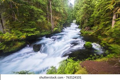 The McKenzie River flows through