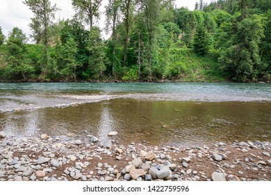 McKenzie River near Springfield Oregon with high flows of water during the Spring runoff.
