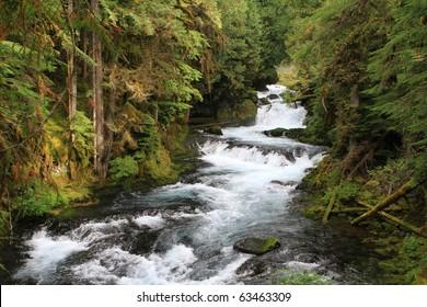 McKenzie River in the Oregon cascades