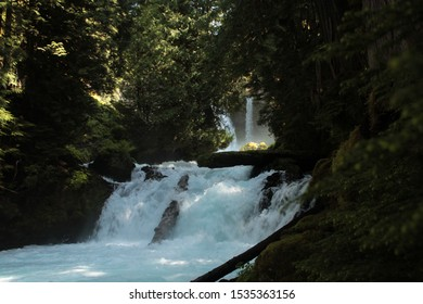 McKenzie River, Oregon, in June