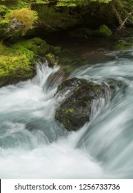 The Mckenzie River in the Willamette National Forest, Oregon.