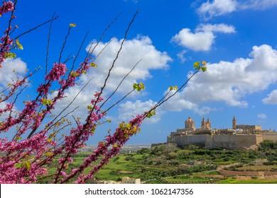 Mdina, the beautiful old walled city of Malta