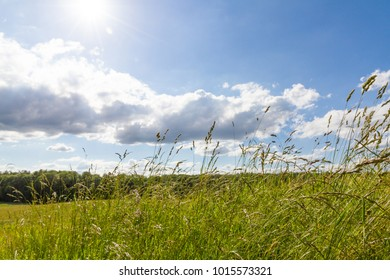 meadow against sky with clouds sun behind