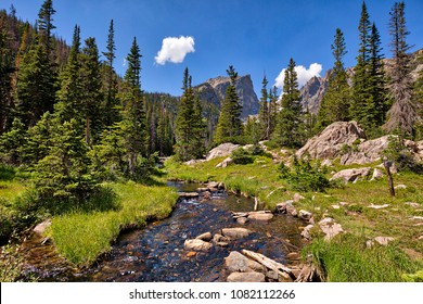 Meadow along Bear Lake Trail in Rocky Mountain National Park.