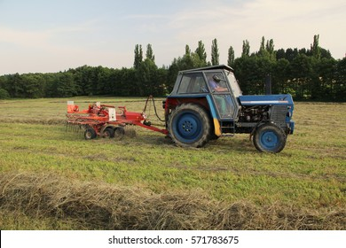 Meadow being raked, preparing hay into rows for baling, grass used as feed, conventional agriculture, side perspective