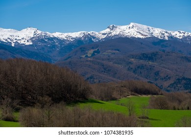Meadow, forests on hills, and snow-capped mountain in Ariege, in the french Pyrenees