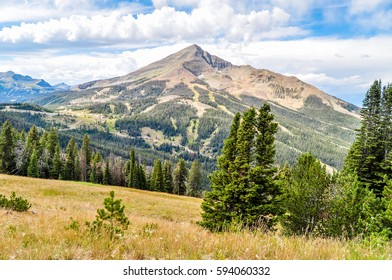A meadow gives way to a forest and then Lone Peak in Montana.