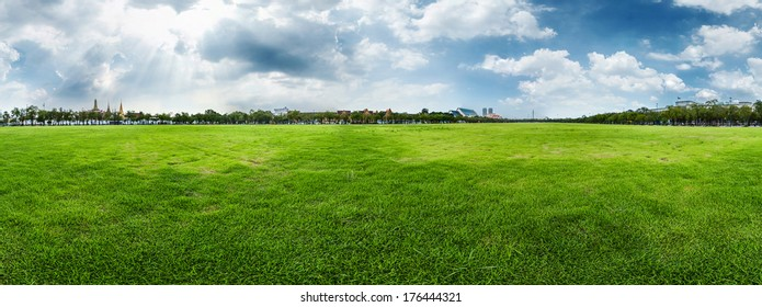 Meadow with green fresh grass and cloudy sky