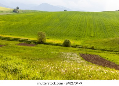 Meadow and Hills in Slovakia - Shutterstock ID 248270479