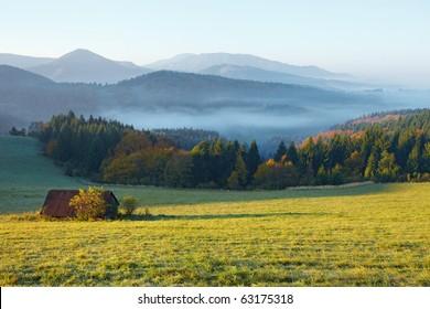 meadow, hut, fog and sunshine