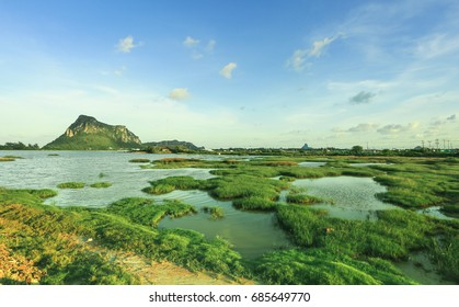 Meadow , lake and mountains from Prachuap Khiri Khun , Thailand, green view background