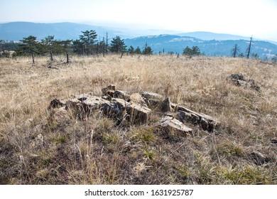 A meadow landscape of Maljen mountain in autumn, Serbia
