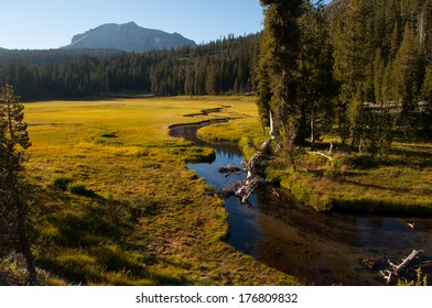 Meadow in Lassen National Park, California.