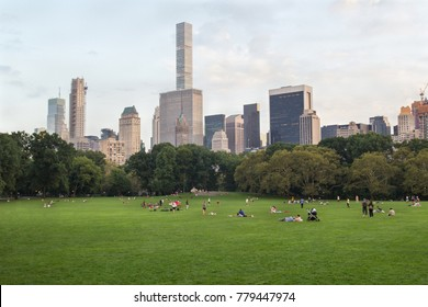 Meadow or lawn in big city (metropolis) park with trees and skyscrapers on background