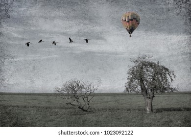 Meadow with lonely apple fruit tree. Migrating birds and hot air  balloon flying in the sky. Tone colors. Old paper texture.
