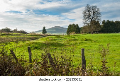 Meadow with mounds at the nature reserve Valley of Gelaengebach in Medebach, Sauerland, Germany