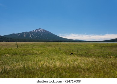 Meadow with Mount Bachelor in the background, near Bend Oregon on the Cascade Lakes National Scenic Byway road