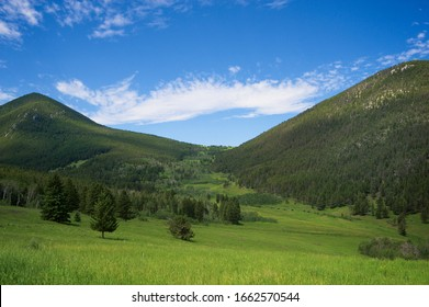 Meadow and mountains in Montana, United States of America