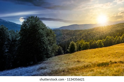 meadow on the forested hill in summer mountain landscape. day and might time change concept. beautiful nature scenery on high altitude