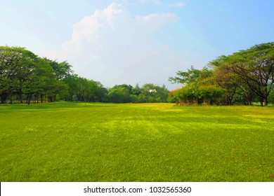 Meadow scenery landscape with blue sky concept.