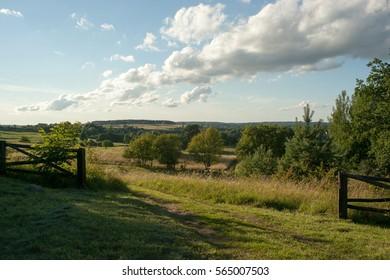 meadow sky summer