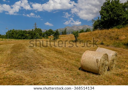Meadow View Hay Rolls Mountains Background Stock Photo Edit