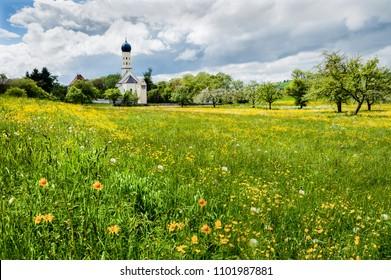 A meadow of wild flowers in village of Lauterach, near Obermarchtal in Germany.