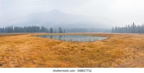 Meadows and Pond under Smoky Sky