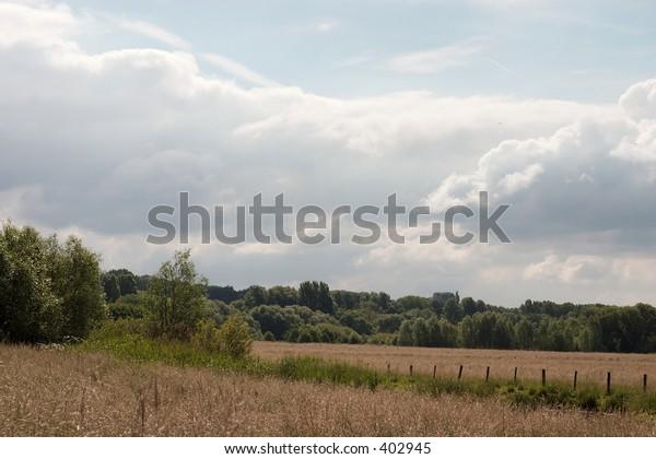 Meadows in the ruhr valley floodplain in muelheim, germany.
