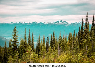 Meadows in the sky parkway at Mount Revelstoke National Park is definitely a natural wonder