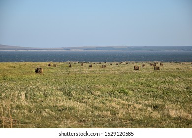 Meadows were cut on the shore of the gulf, and mowed grass was formed into round haystacks. Dry haystacks are twisted into rollers.