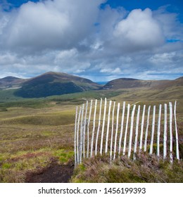 Meall a Bhuachaille (Mound of the herdsmen) 810m and Creagan Gorm, Cairngorm National Park, Scottish Highlands. Taken in the summer with a snow fence in the foreground.