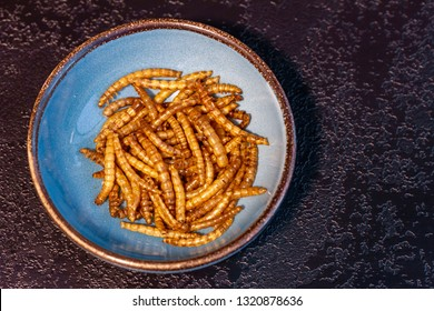 Mealworms (Tenebrio molitor) in a bowl