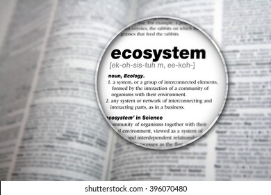 The meaning of the word 'Ecosystem'.