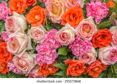 Means ornamental plants grown for their beauty. Decorations dwellings to be pleasing to the eye. Most often as an ornamental plant. So collectively, Flower