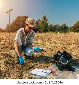 Measuring Soil Temperature with Thermometer. Female agronomist measuring soil temperature in the field. Field work for Environment protection project
