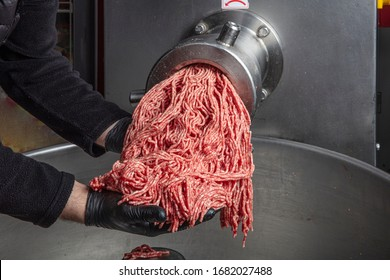 Meat grinder in action and ground beef meat. electric meat grinder. Unidentifiable butcher holding tray full of minced raw red meat leaving machine in food processing plant.