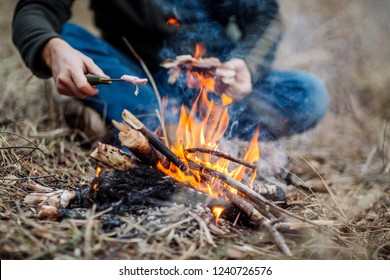 meat on the stick grilled in the fire. bushcraft concept