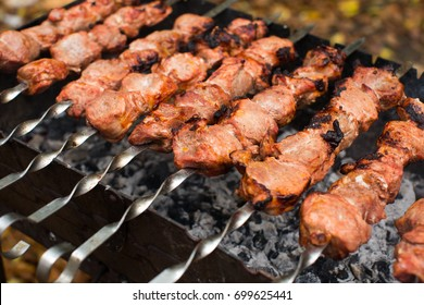 Meat roasted on fire barbecue kebabs on the grill