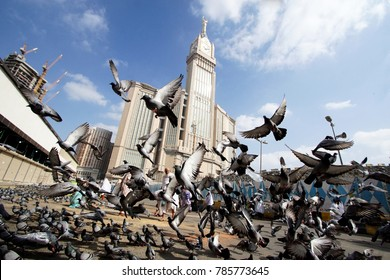 MECCA, SAUDI ARABIA: DEC13 , 2017 Skyline with Abraj Al Bait (Royal Clock Tower Makkah) in Mecca, Saudi Arabia with pigeons birds flying away.