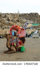 Mecca/Saudi Arabia - July 11th, 2013: A camel with a colorful passenger seat on its back with Jabal Rahmah (English: Mount of Mercy) on the background