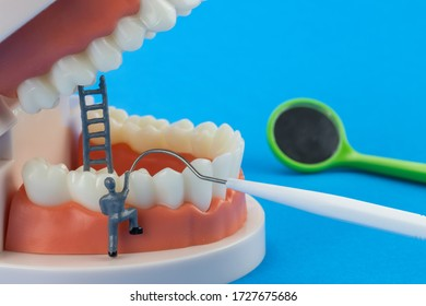 Mechanic model Miniature people cleaning tooth model as medical and healthcare concept, Regular checkups are essential to oral health on blue background. Dentist equipment.scalers.mouth mirror.